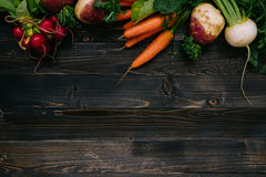 Organic vegetables background. Fresh harvested vegetables on the dark wooden background, top view, with copy space Stock Photos