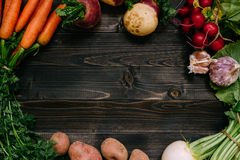 Organic vegetables background. Fresh harvested vegetables on the dark wooden background, top view, with copy space Stock Images