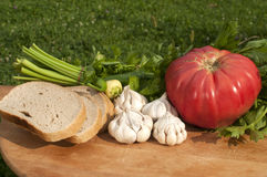 Organic vegetables and bread slices Stock Images