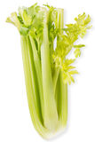 Organic vegetables - celery with leaves. Isolated on white background Stock Photo