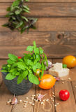 Organic vegetables and cheese Royalty Free Stock Photos
