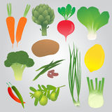 Organic  Vegetables Collection Royalty Free Stock Images