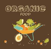 Organic vegetables concept Royalty Free Stock Photo