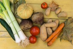 Organic vegetables from a farm on a wooden table stock image