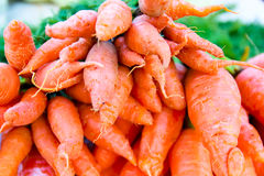 Organic vegetables.Fresh carrots in the market Royalty Free Stock Images