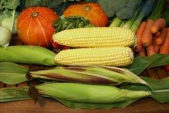 Organic Vegetables Stock Photos