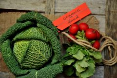 Organic vegetables : green cabbage and radish on a wooden board Stock Image
