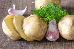 Organic vegetables with green-stuff Royalty Free Stock Photos