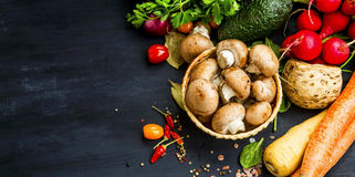 Organic vegetables harvest with mushrooms, tomatoes, carrots, ce Royalty Free Stock Photos