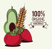 Fresh Organic vegetables. Organic vegetables icon vector illustration graphic design vector illustration