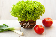 Organic vegetables. Organic lettuce, green onion and tomato Stock Photo