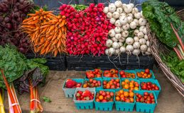 Organic vegetables. For sale at market Royalty Free Stock Photo