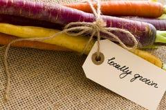 Organic Vegetables. Organic rainbow carrots from the local farm Royalty Free Stock Photo