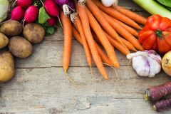 Organic vegetables on a table Royalty Free Stock Image