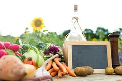 Organic vegetables on a table Royalty Free Stock Images