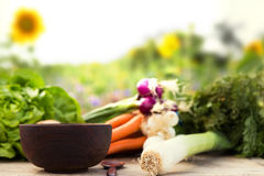 Organic vegetables on a table Royalty Free Stock Photography