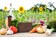 Organic vegetables on a table Royalty Free Stock Photos