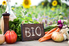 Organic vegetables on a table Stock Images
