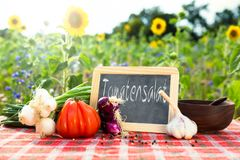 Organic vegetables on a table with german text Royalty Free Stock Image