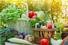 Organic vegetables in wicker basket Royalty Free Stock Image