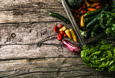 Organic vegetables on wood Royalty Free Stock Images