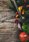 Organic vegetables on wood. Stock Images