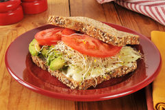 Organic veggie sandwich Stock Photo