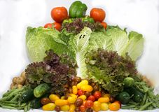 Organic Veggies Basket from Family Farmer royalty free stock photos