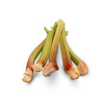 Organic Very Red Rhubarb Royalty Free Stock Images