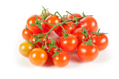 Organic Vine Cherry Tomatoes Isolated on White Stock Photo