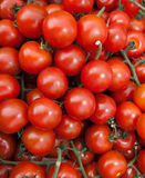 Organic Vine Tomatoes royalty free stock photo