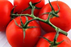Organic vine tomatoes Royalty Free Stock Photos