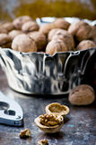 Organic walnuts from a garden in a metal bowl Royalty Free Stock Photography