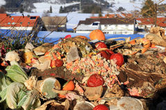Organic waste Royalty Free Stock Photos