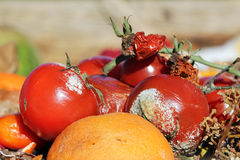 Organic waste. Discarded fruit and vegetables on the organic waste Stock Image