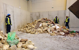 Organic waste plant Stock Photo