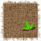 Organic weave pattern. Eco background Stock Photos