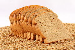 Organic wheat bread loaves and wheat. Organic wheat bread .Selective focus photograph.Fresh wheat bread loaves and wheat.Selective focus photograph royalty free stock images