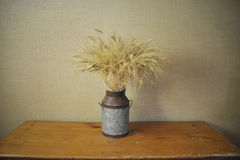 Organic Wheat. Gathered in a rustic pot on a wooden table royalty free stock images