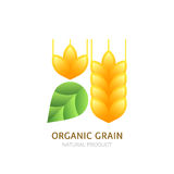 Organic wheat grain logo, icon, label  design elements. Stock Images