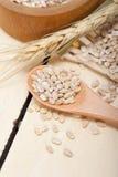 Organic wheat grains Stock Image