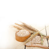 Organic wheat grains Royalty Free Stock Image