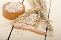 Organic wheat grains. Over rustic wood table macro closeup Royalty Free Stock Photo