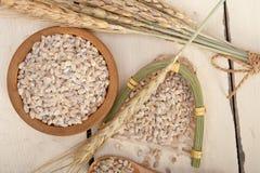 Organic wheat grains Stock Photography