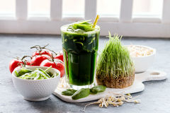 Organic Wheat Grass Spinach and sprout detox drink royalty free stock photo