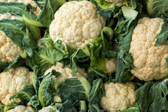 Organic white cauliflower on sale in the grocery stall. In summer stock photos