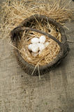 Organic white domestic eggs in vintage basket Royalty Free Stock Image