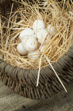 Organic white domestic eggs in vintage basket Royalty Free Stock Photos