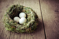 Organic white eggs in hay nest at wooden table Royalty Free Stock Images