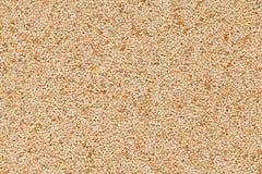 Organic White Poppy seed. Royalty Free Stock Image